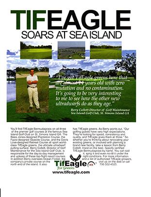 TifEagle at SeaIsland